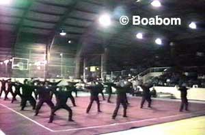 boabom-class-2