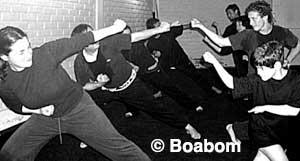 boabom-logak-2