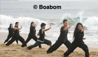 boabom-ocean