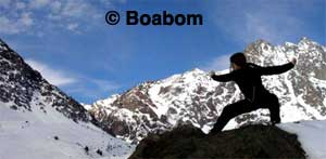 boabom-old-mountain